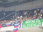fanslovenia